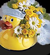 Teleflora's Ducky Delight - Boy Flowers