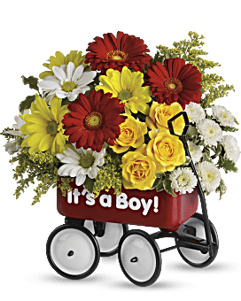 Baby's Wow Wagon by Teleflora - Boy Flower Arrangement
