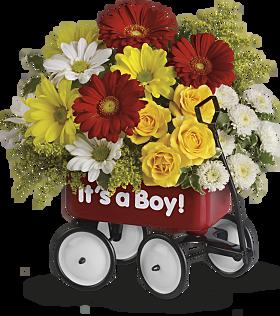 Wow baby wagon gift