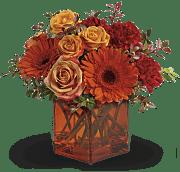 Orange flowers in orange cube vase
