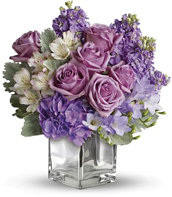 Sweet as Sugar by Teleflora Flowers
