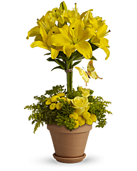Yellow Fellow Bouquet