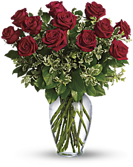 """The classic romance of a dozen red roses can say so many things, from """"I love you!"""" to """"I'm sorry."""" Stunning in its simplicity, this elegant arrangement of deep red roses, rich green salal and delicate pitta negra makes quite an impression. It's the perfect choice when you want to send flowers to your girlfriend's office. Always On My Mind - Long Stemmed Red Roses - Flower Delivery By Teleflora"""