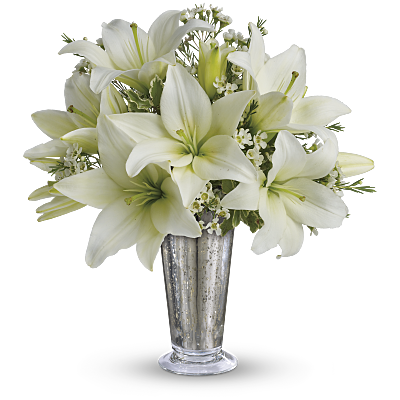 Shop for Lilies