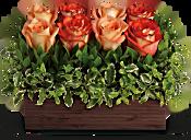 Teleflora's Uptown Bouquet Flowers
