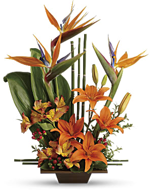 Shop Teleflora's Exotic Grace flower arrangment