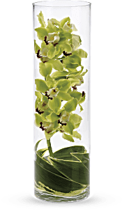 Zensational Flowers