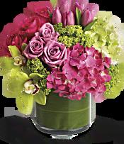New Sensations Flowers