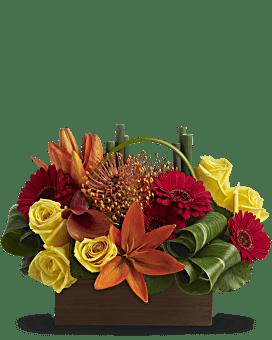 Teleflora's Bamboo Getaway Flower Arrangement