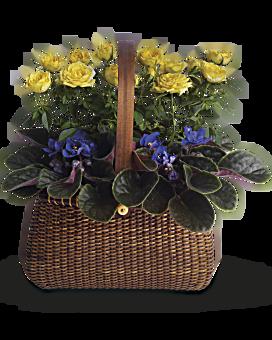 Arrangement floral avec panier Jardin à emporter