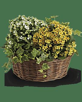Arrangement floral Panier de joie