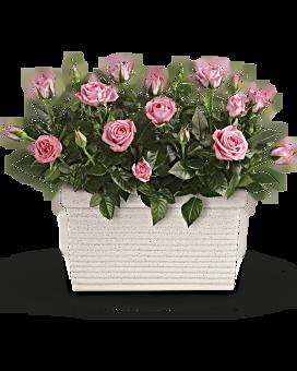 Rose Repose Bouquet