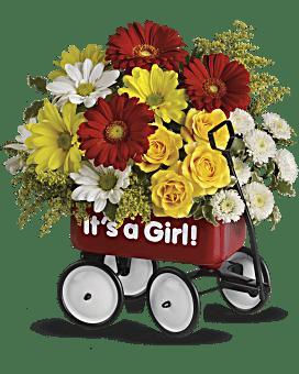 Vive le Wagon de bébé de Teleflora - Arrangement floral pour fille