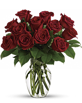 Passion immuable - 12 Bouquet de roses rouges