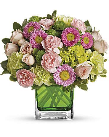 Aster Bouquets | Flower Arrangement of Asters | Teleflora
