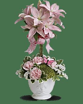 Quick View Telefloras Blushing Lilies Plant