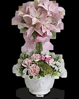 Teleflora's Blushing Lilies Plant