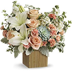 Shop Teleflora Desert Sunrise succulent bouquet