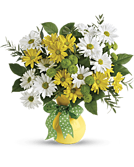 Quick View Telefloras Daisies And Dots Bouquet