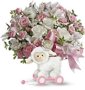 Pink Sweet little Lamb pull-toy Gift