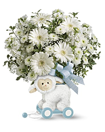 Shop the Sweey Little Lamb arrangement in blue