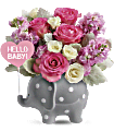 Teleflora's Hello Sweet Baby - Pink Flowers
