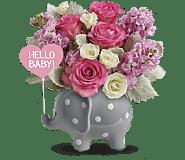 Teleflora's Hello Sweet Baby