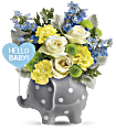 Teleflora's Hello Sweet Baby - Blue Flowers