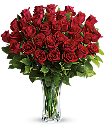 love and devotion long stemmed red roses bouquet teleflora