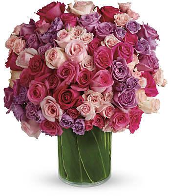 Rose Rapture Flowers
