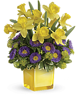 Teleflora's Playful Springtime Daffodil Bouquet Bouquet