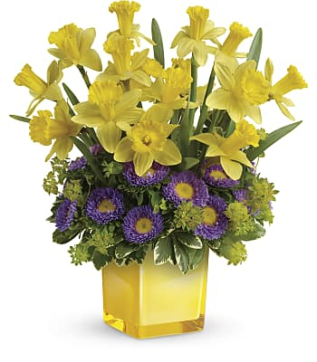 Playful Springtime Daffodil Bouquet Flowers