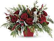 Winter Blooms Centerpiece DX Flowers