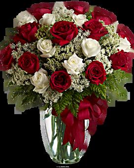 Love's Divine Bouquet - Long Stemmed Roses Bouquet