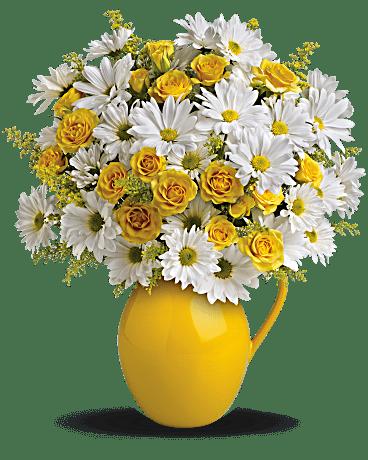 Teleflora's Sunny Day Pitcher of Daisies Flower Arrangement