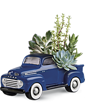 His Favorite Ford F1 Pickup by Teleflora Plant