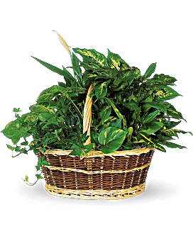 Arrangement floral Grand panier jardinier
