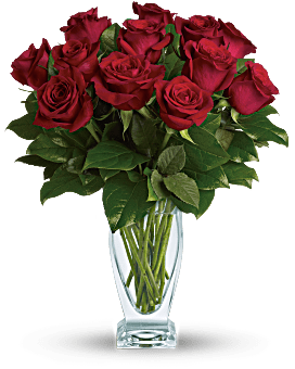 Teleflora's Rose Classique - Dozen Red Roses Bouquet