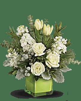 Teleflora's Winter Pop Bouquet Bouquet